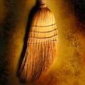 Broom 082