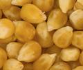 TMG_dried_corn