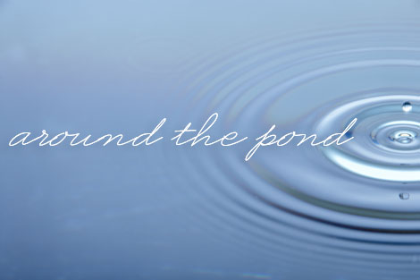 TMG_around_pond