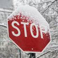 TMG_stop_sign